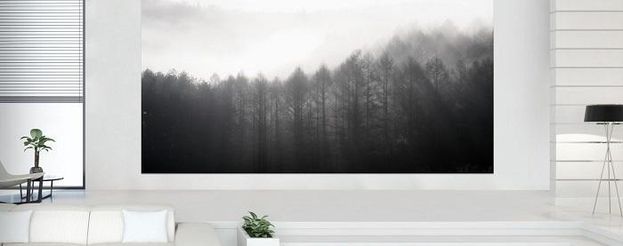 The-Wall-Luxury2-1260x500.jpg